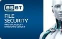 Obrázek pro kategorii ESET Server Security pro Microsoft Windows Server